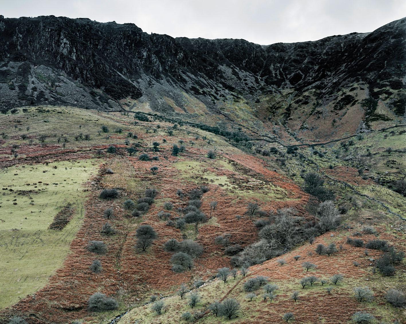 landscapes-18